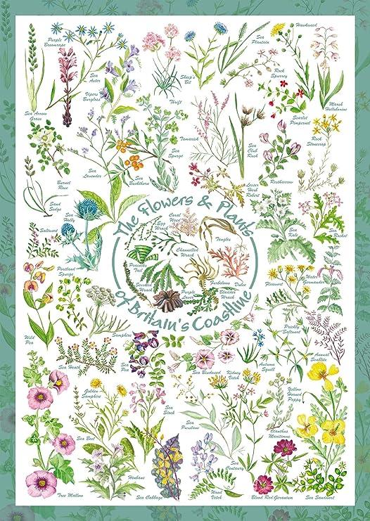 Blumen und Pflanzen 1.000 Teile Puzzle Spiel Deutsch 2017 Countryside Art