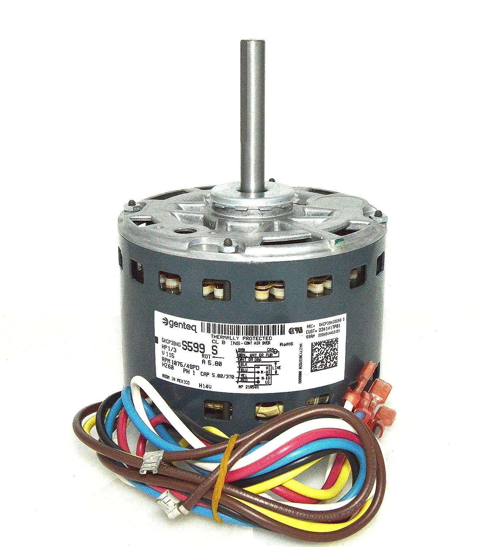 Trane American Standard Furnace Blower Motor 1/3 HP 115v X70671687010  D341417P01 - - Amazon.com