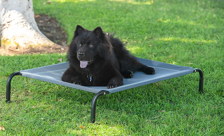 Amazon.com: Cama para gatos o perros portátil, alta ...