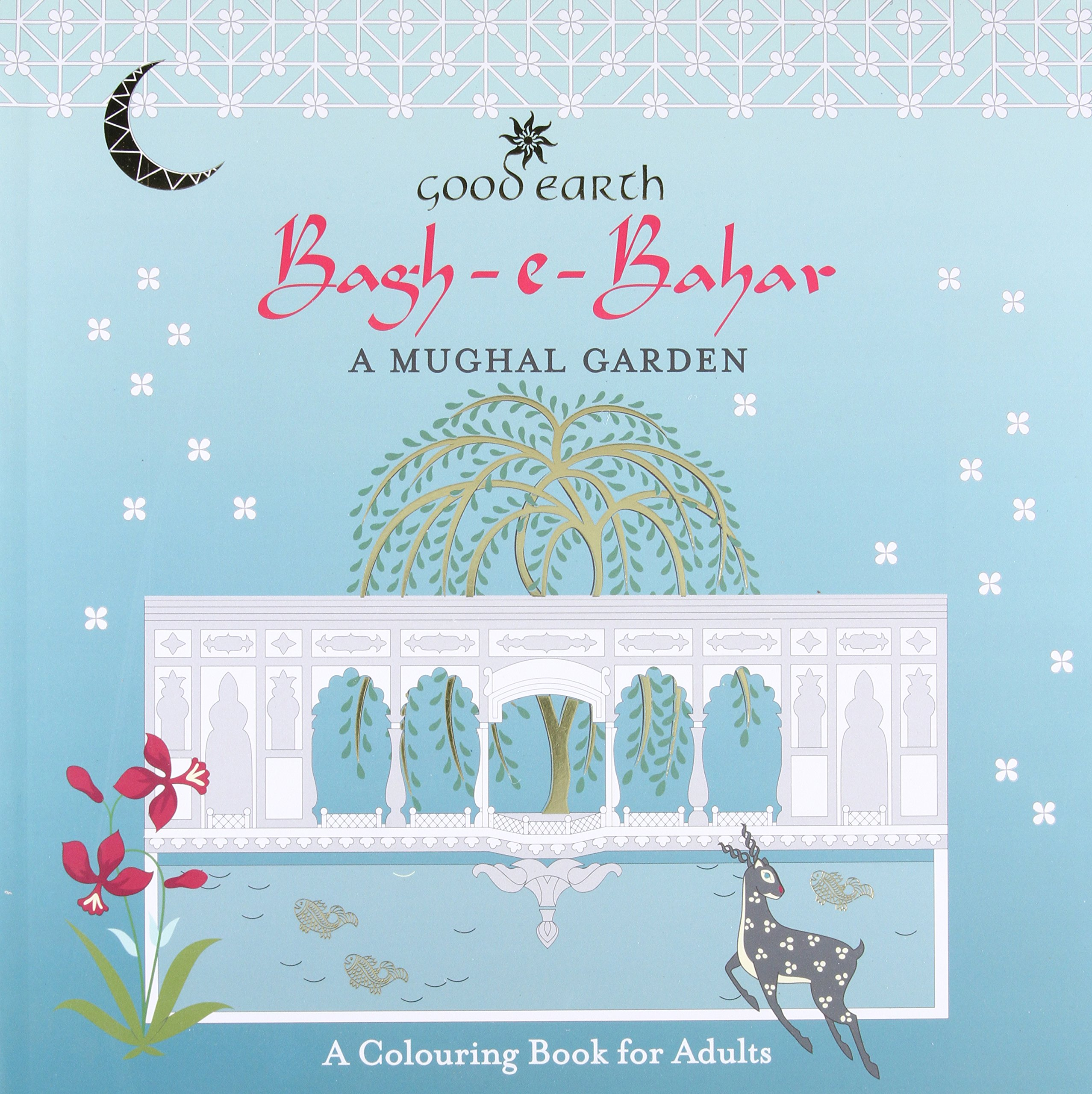 Bagh E Bahar A Mughal Garden Colouring Book For Adults Good Earth 9780143426561 Amazon Books