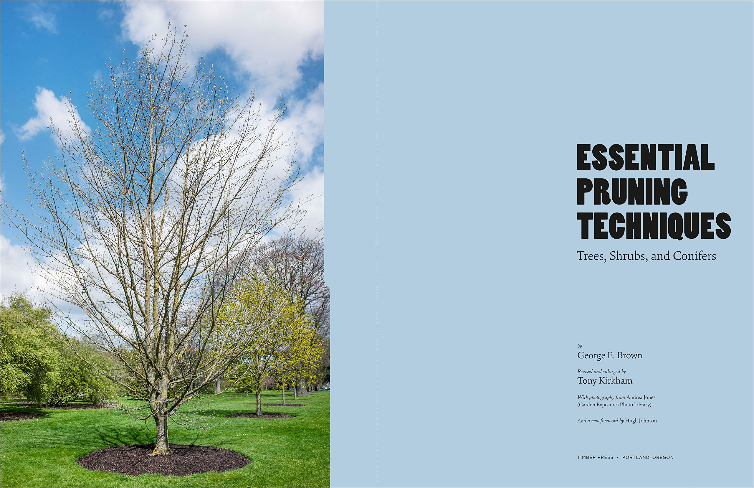 Essential Pruning Techniques: Trees, Shrubs, And Conifers: George E Brown,  Tony Kirkham: 9781604692884: Amazon: Books