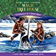 Narwhal on a Sunny Night (Magic Tree House (R))