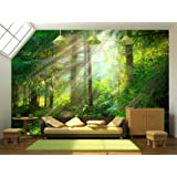 wall26 - Park. Beautiful misty old forest - Removable Wall Mural | Self-adhesive Large Wallpaper - 66x96 inches