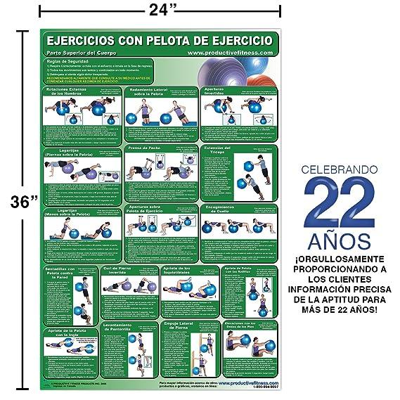 Amazon.com : Ejercicios con pelota de ejercicio - Parte superior del cuerpo - Cartel - Body Ball Exercises - Upper body/Lower Body (Spanish Edition) Poster ...