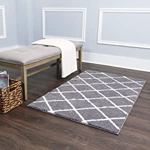 "Home Dynamix Laura Hill Princeton Ivy Accent Rug, 27""x45"", Gray/Ivory"