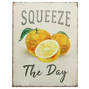 "Barnyard Designs Squeeze The Day Funny Retro Vintage Tin Bar Sign Country Home Decor 13"" x 10"""