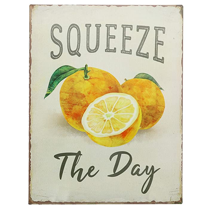 """Barnyard Designs Squeeze The Day Funny Retro Vintage Tin Bar Sign Country Home Decor 13"""" x 10"""""""