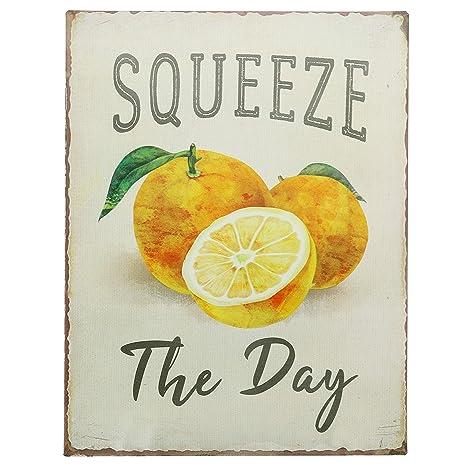 Amazon.com: Barnyard Designs Squeeze The Day – Cartel retro ...