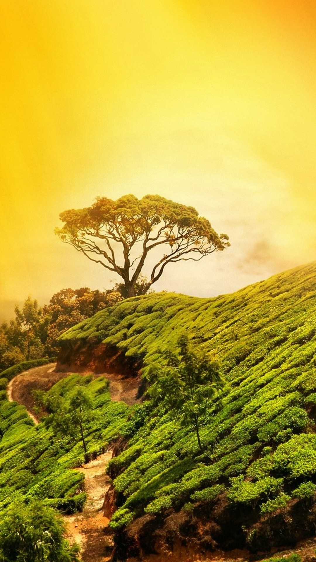 Amazon Com Beautiful Nature Wallpaper Appstore For Android