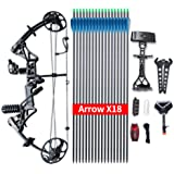 """Compound Bow Ship From USA Warehouse,Topoint Archery Package M1, 19""""-30"""" Draw Length,19-70Lbs Draw Weight,320fps IBO LIMBS MADE IN USA"""