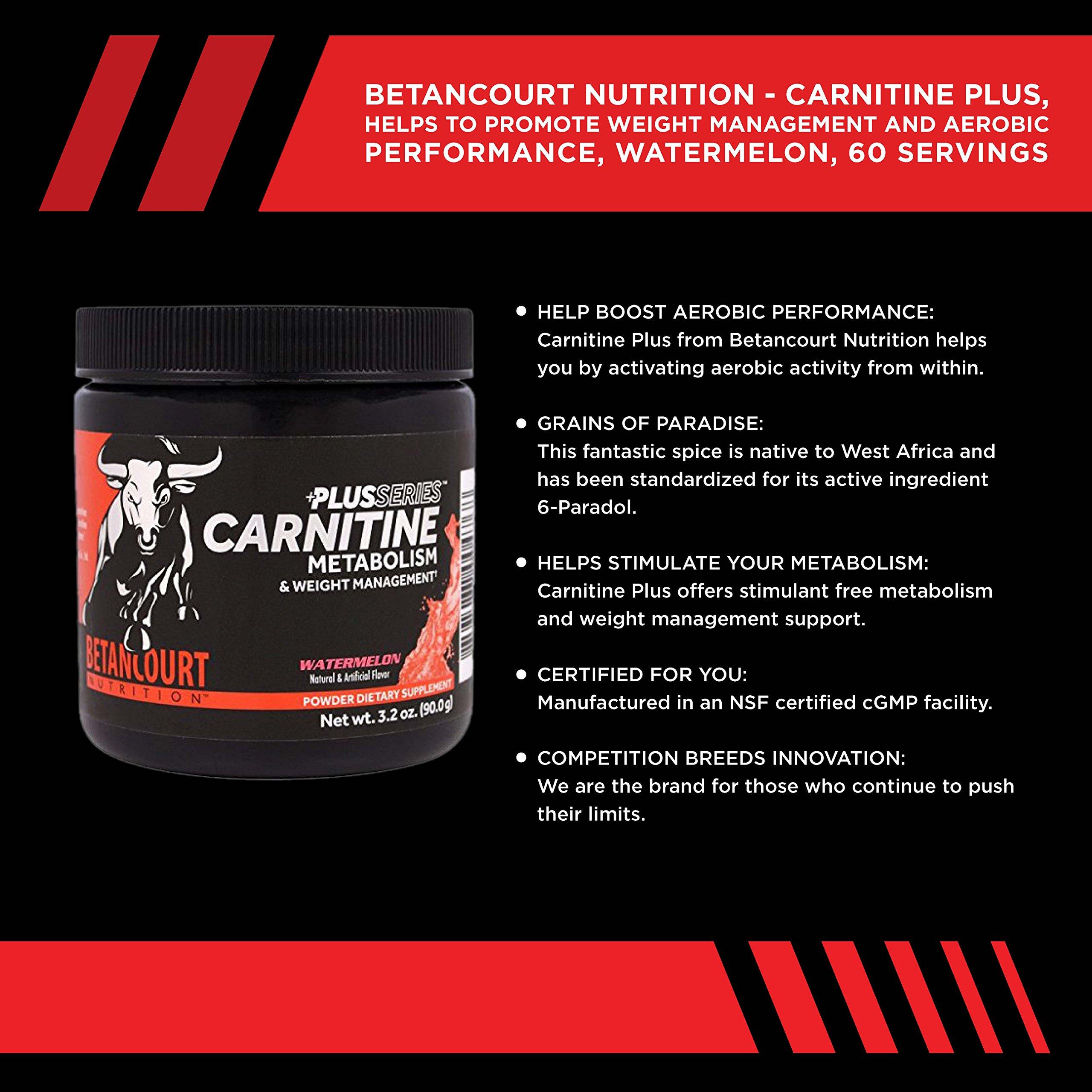 Betancourt Nutrition Plus Series Carnitine Plus Watermelon - 60 Servings