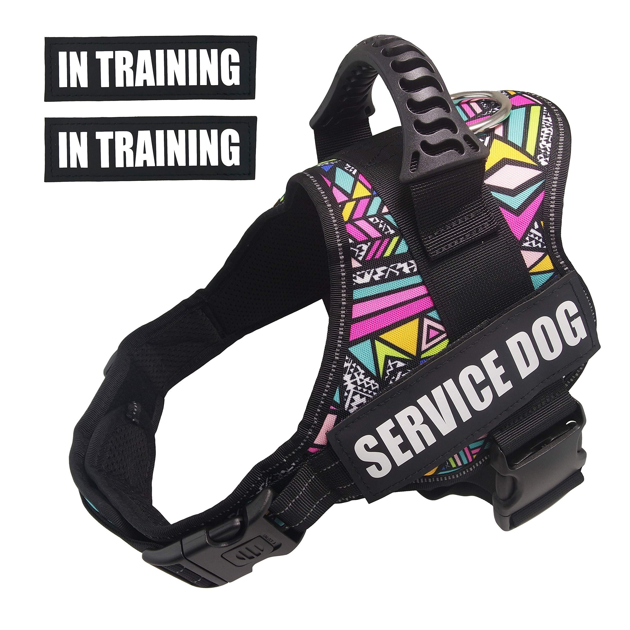 Dihapet Dog Harness, Service Dog Vest, No Pull No Choke Dog Vest for Training Walking Jogging (M Chest 24-31in, Colorful Rhomboids)