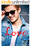 What Love Means: Gay YA Romance