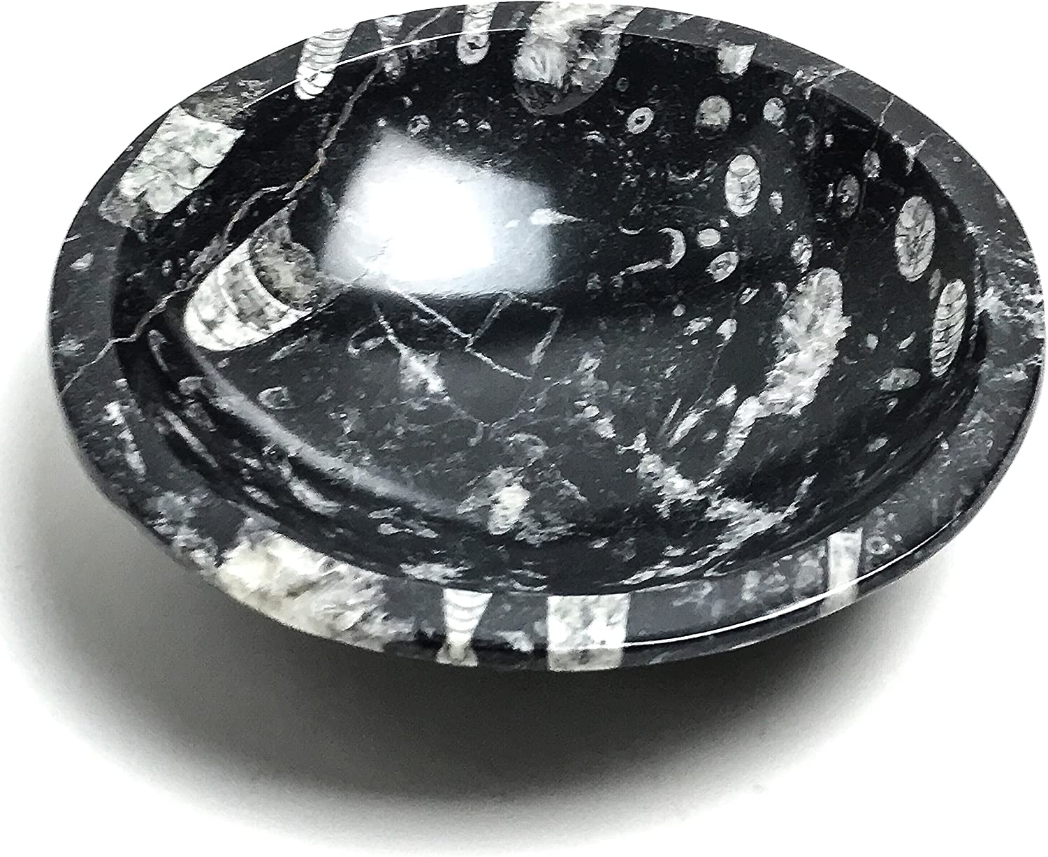 Fossil Bowl Seeing Bowl Scrying Bowl Orthoceras Bowl