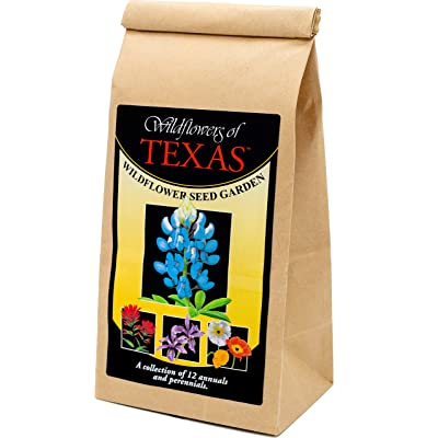 Texas Wildflower Seed Mix - A Beautiful Collection of Twelve annuals and perennials - Enjoy The Natural Beauty of Flowers in Your own Home Garden : Garden & Outdoor