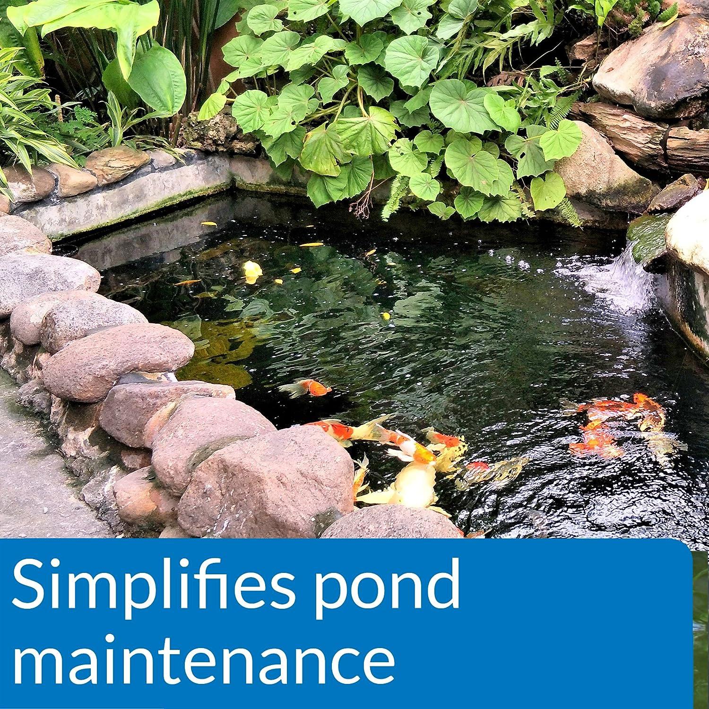 Amazon API POND ECOFIX SLUDGE DESTROYER Pond Water Clarifier