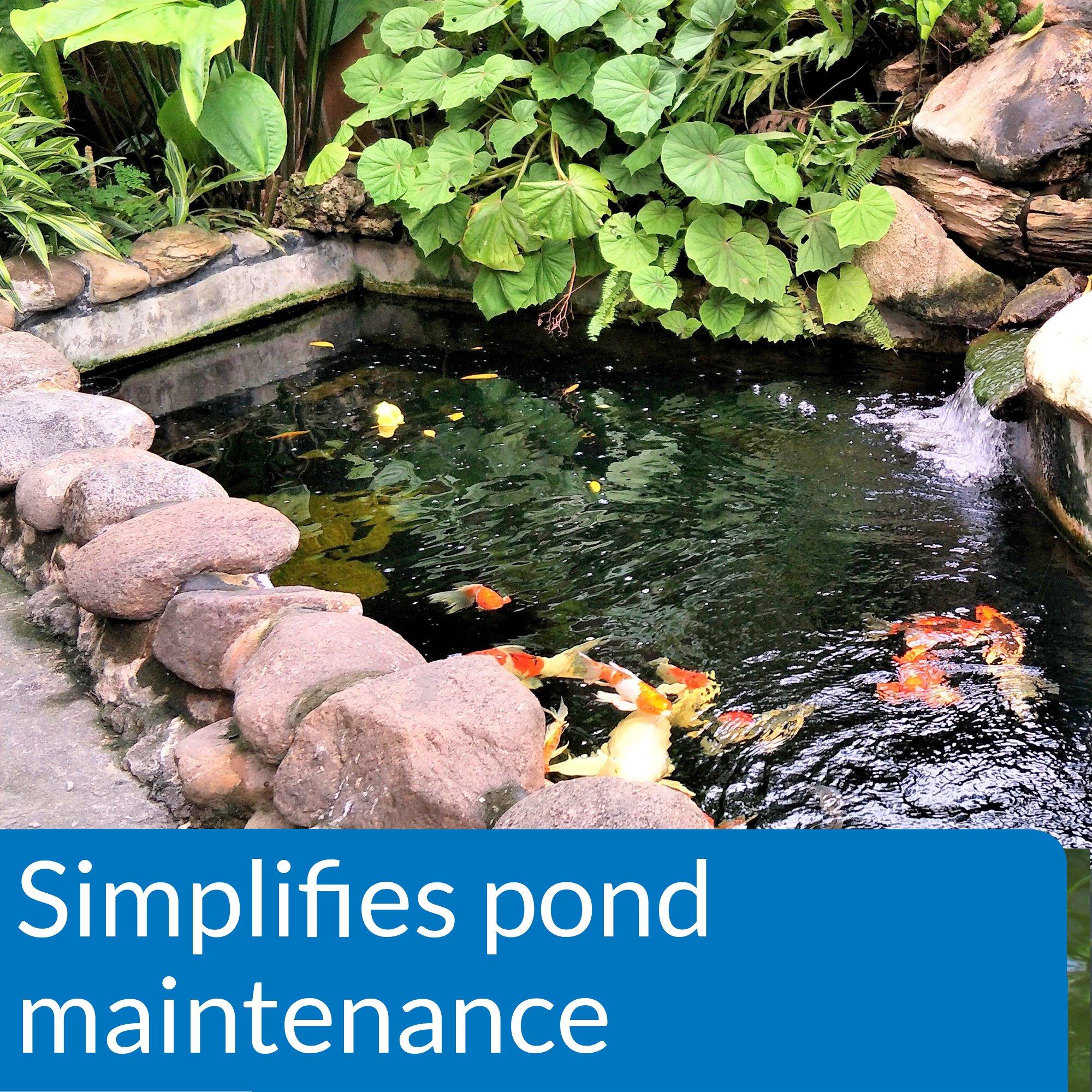 API POND ECOFIX SLUDGE DESTROYER Pond Water Clarifier and Sludge Remover Treatment 64-Ounce Bottle by API (Image #2)