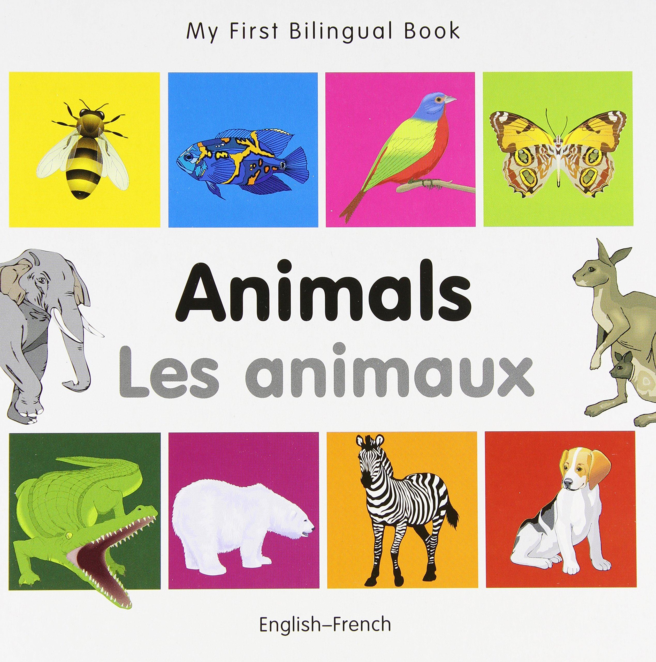 Bedroom english french dictionary wordreference com - My First Bilingual Book Animals English French French And English Edition Milet Publishing 9781840596120 Amazon Com Books