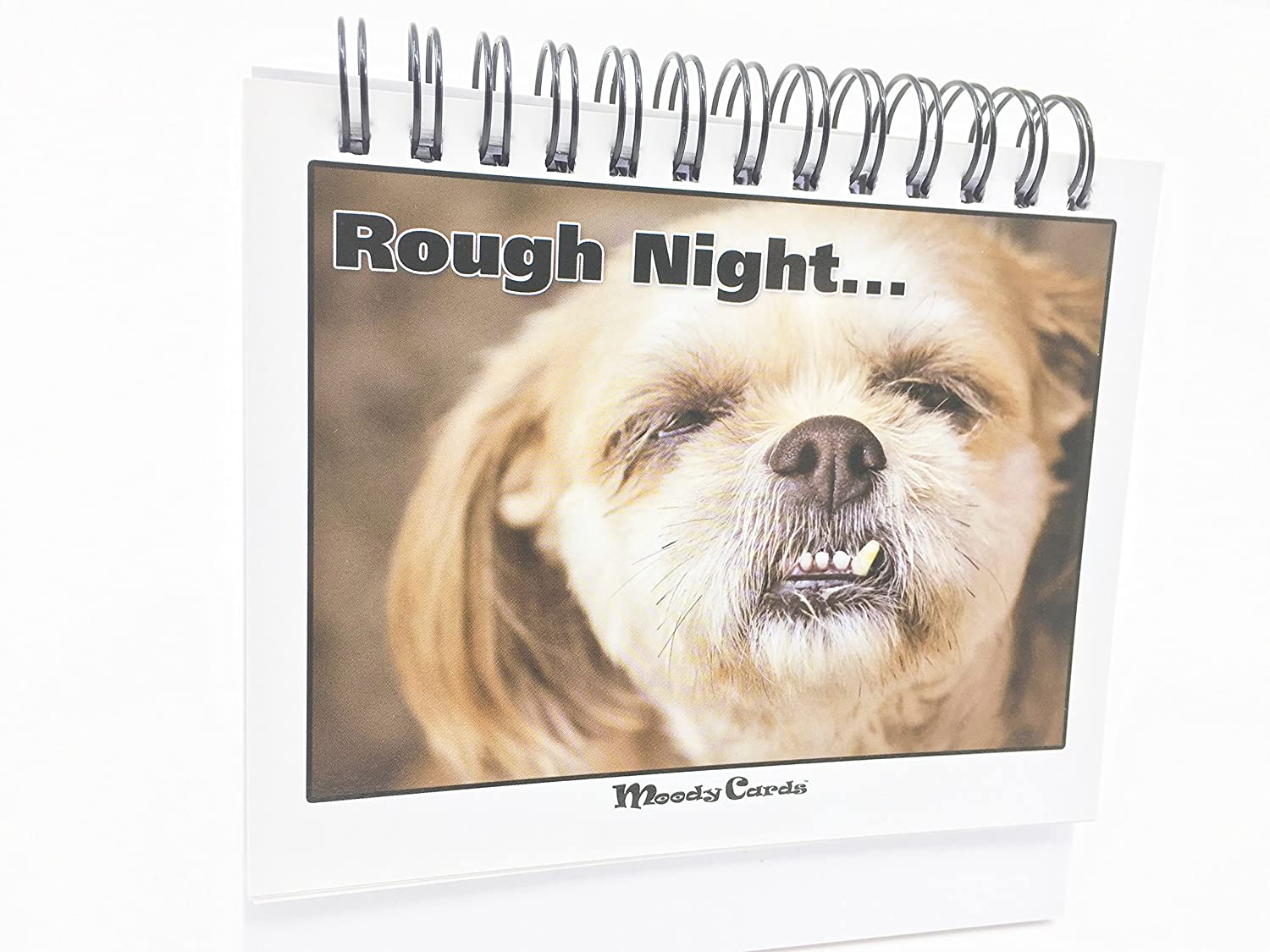 Amazon.com : Funny Office Gifts - Doggy Moodycards! Great Cubicle ...
