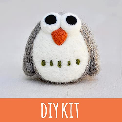 Amazon Com Needle Felting Kit Beginner Owl Felting Starter Kit