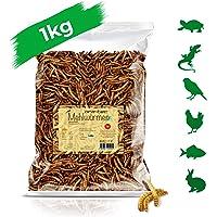 Ora de Tec 1kg de harina gusanos secar