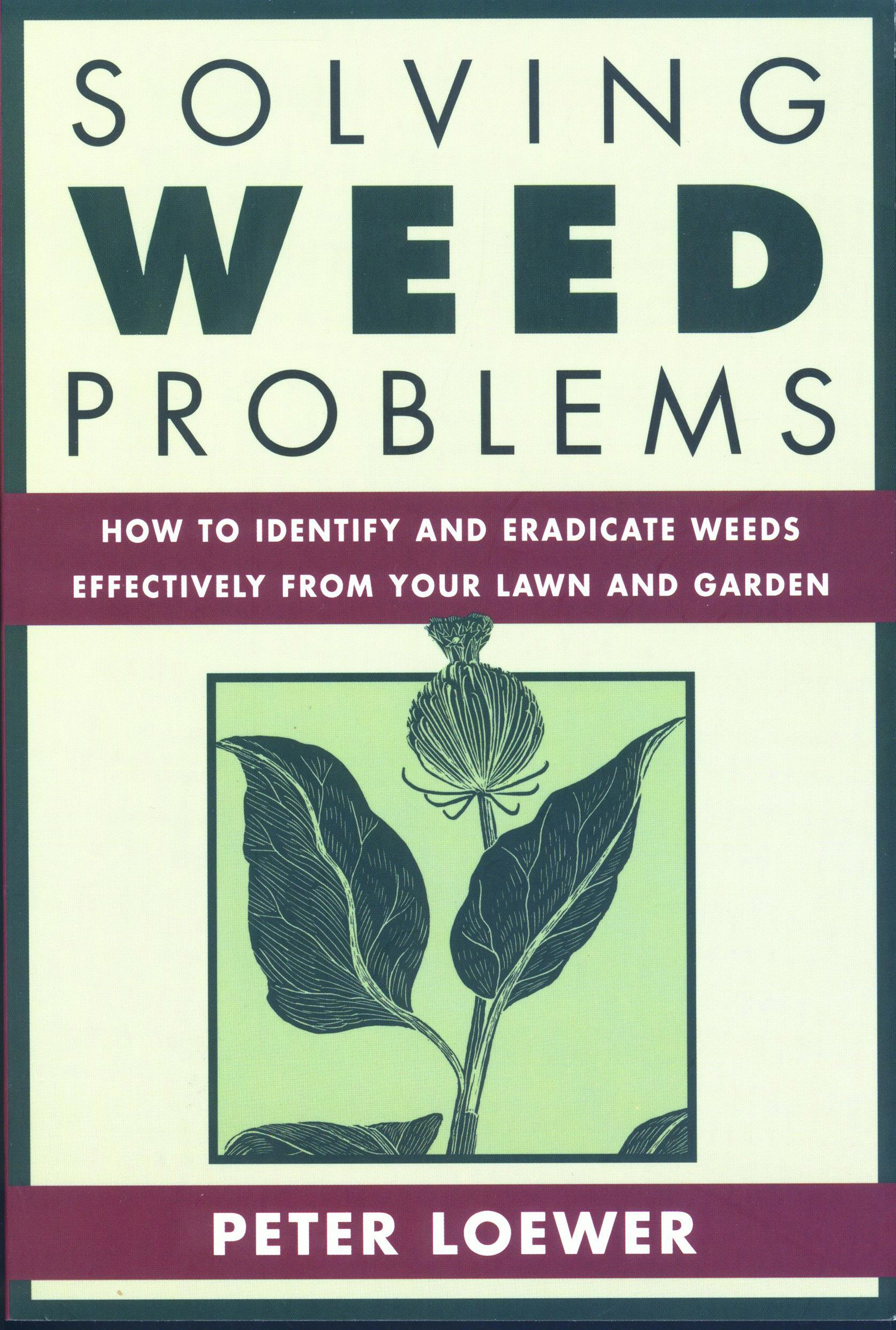 Solving Weed Problems: How to Identify and Eradicate Them Effectively from Your Garden