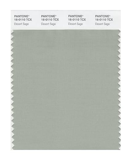 Pantone Smart 16 0110x Color Swatch Card Desert Sage House Paint