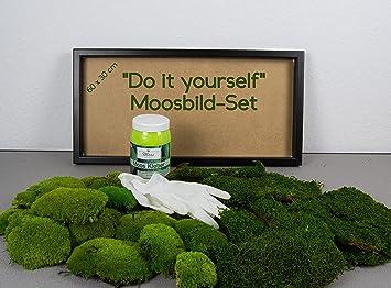DIY Moosbild Selber Machen, Wandbilder Selber Kleben, Moosbilder Selber  Gestalten, Do It Yourself