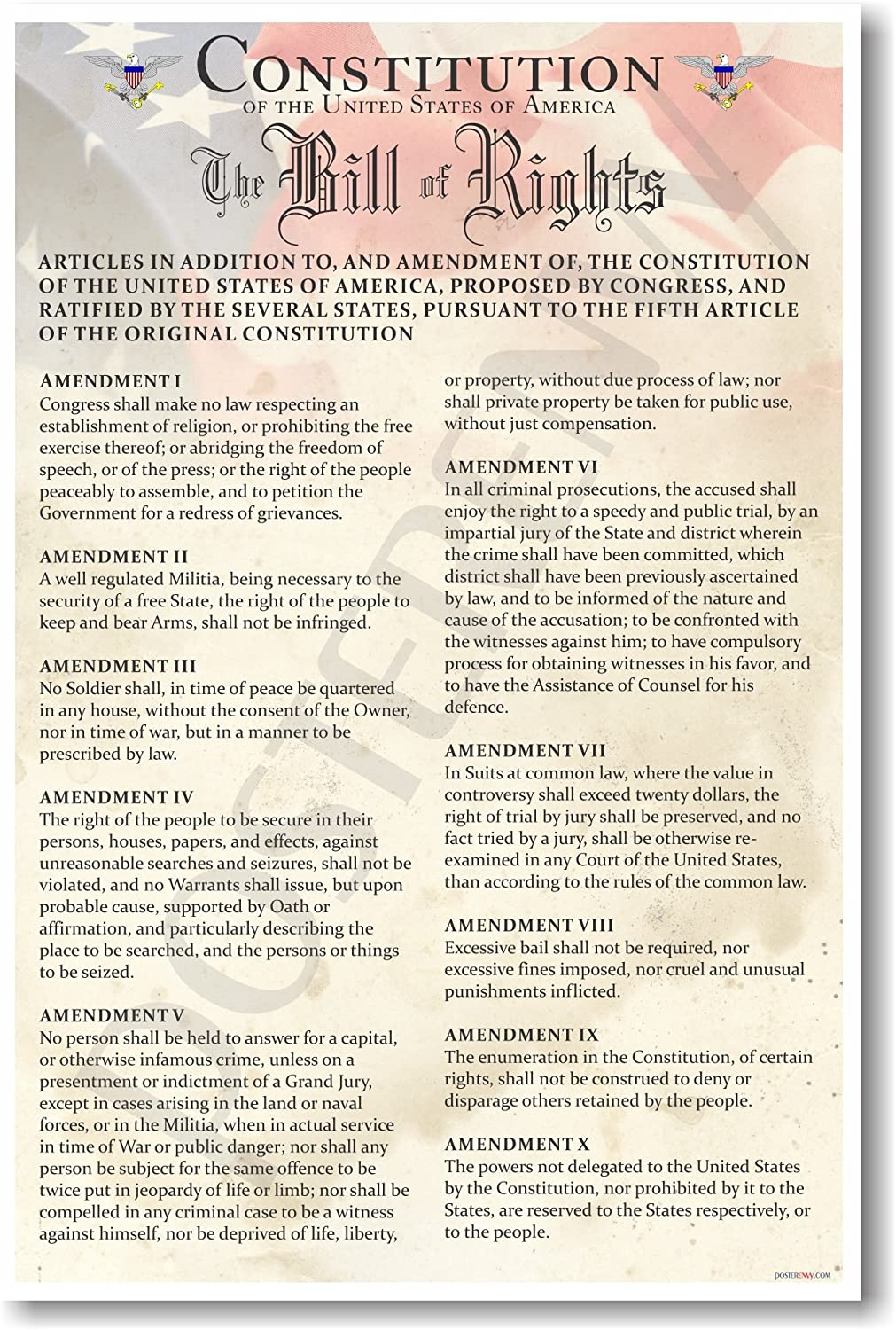 2  Lrg Posters-Bill of Rights/& Declaration of Independence ~Home School~ Decor