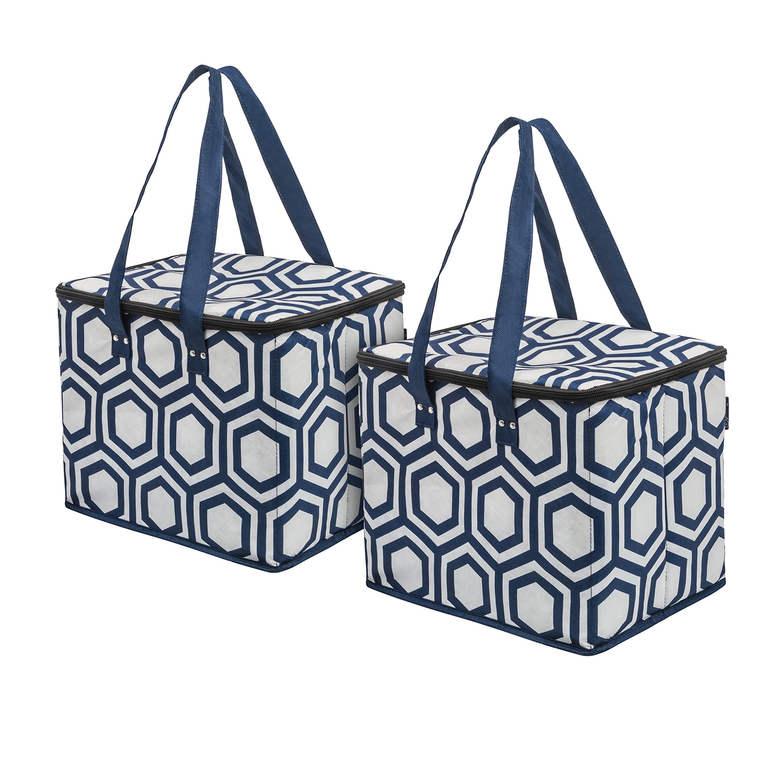 Planet E Reusable Grocery Shopping Bags – Large Collapsible Insulated zippered Coolers with Reinforced Bottom Made of Recycled Plastic (Pack of 2)