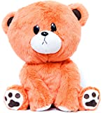 Buddy the Apology Teddy Bear Stuffed Animal Plush for Children Girlfriends Boyfriends by Buddy Plush