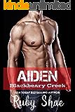 Aiden (Blackbeary Creek Book 3)