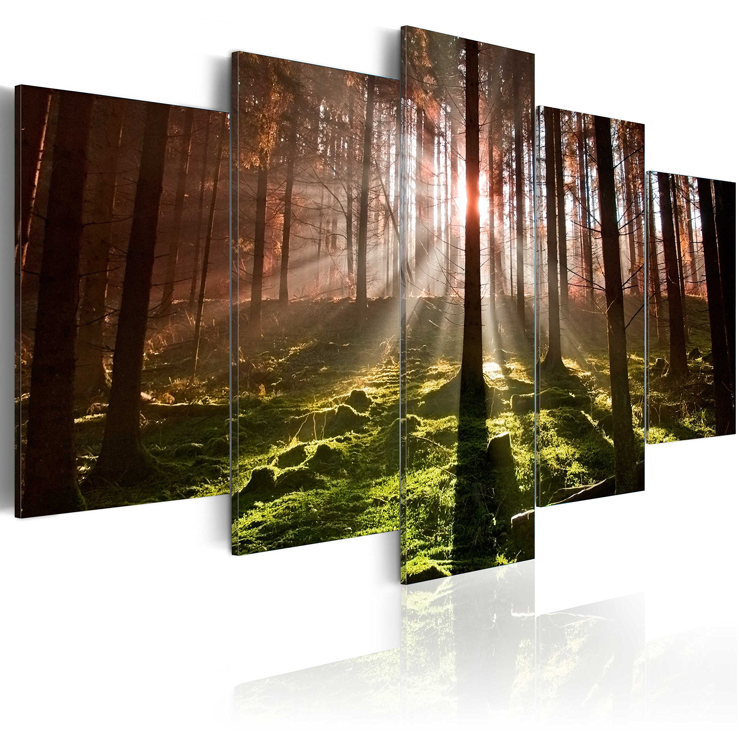 Image 200x100 cm (78,7 by 39,4 in) - Image printed on canvas - 5 pieces - NATURE 030213-33 by artgeist