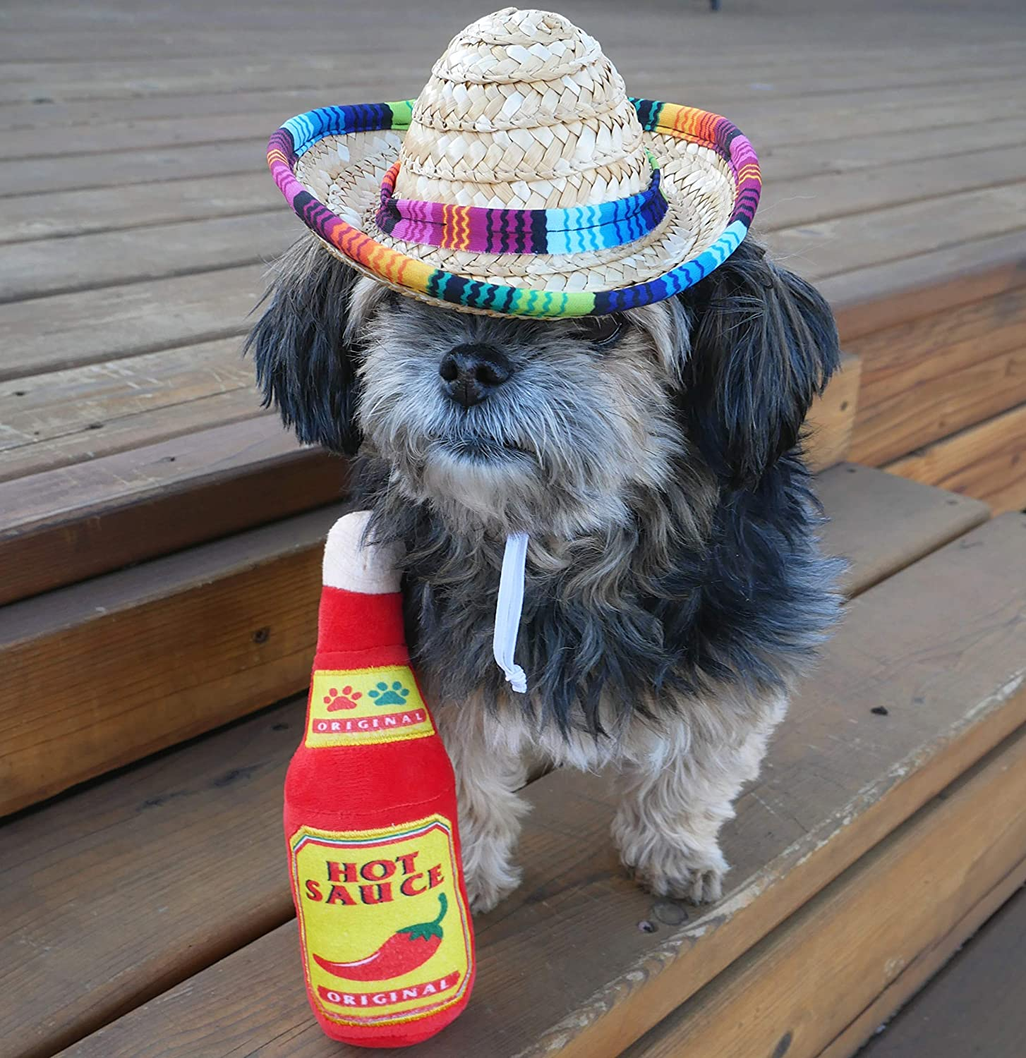 Dog Sombrero and Hot Sauce Plush Toy Pack - Funny Dog Costume and Chew Squeak Toy - Chihuahua Clothes - Mexican Party Decorations : Kitchen & Dining