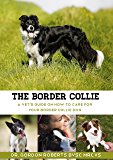 The Border Collie: A vet's guide on how to care for your Border Collie dog