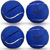 RMS Walker Glide Balls - A Set of 4 Balls with Precut Opening for Easy Installation, Fit Most Walkers (Blue)
