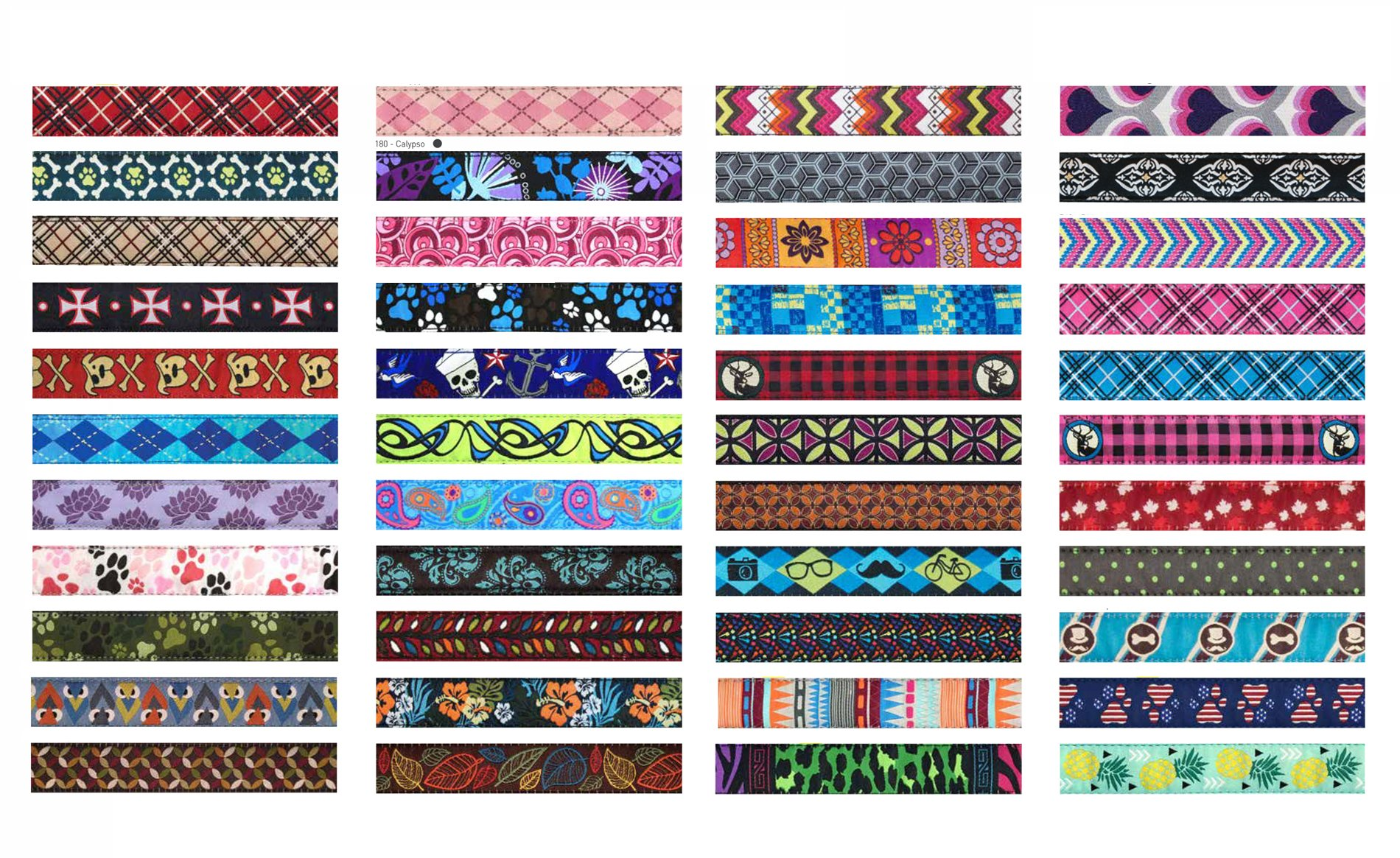 RC Pet Products 1-Inch Adjustable Dog Clip Collar, 12 by 20-Inch, Medium, Tropical Paisley