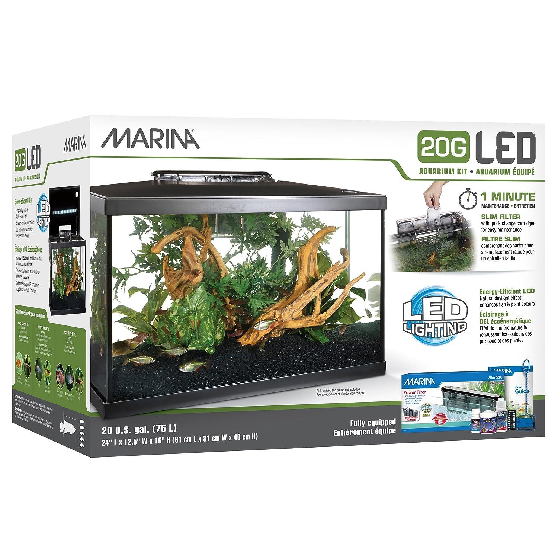 Amazon Marina LED Aquarium Kit 5 gallon Pet Supplies