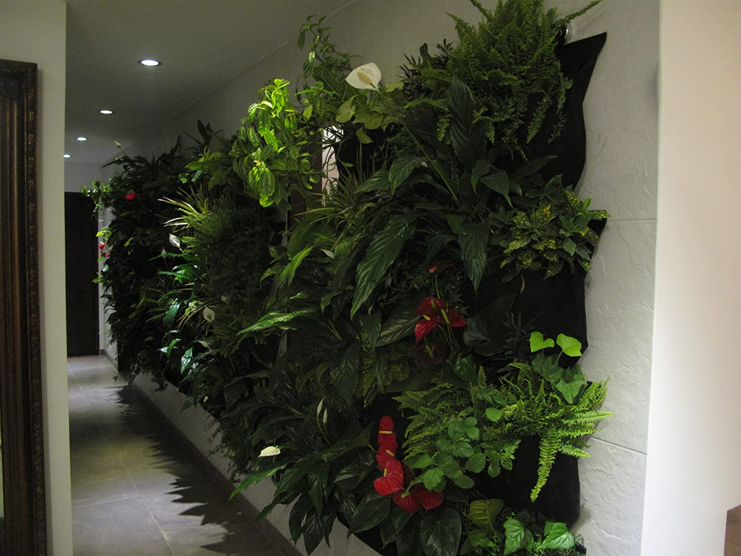 Amazon.com : Living Wall Planter INDOOR/OUTDOOR USE W/Reservoir (Color:  Chocolate) Vertical Garden (Modular, Sustainable, Eco, Green) Hanging  Planter ...