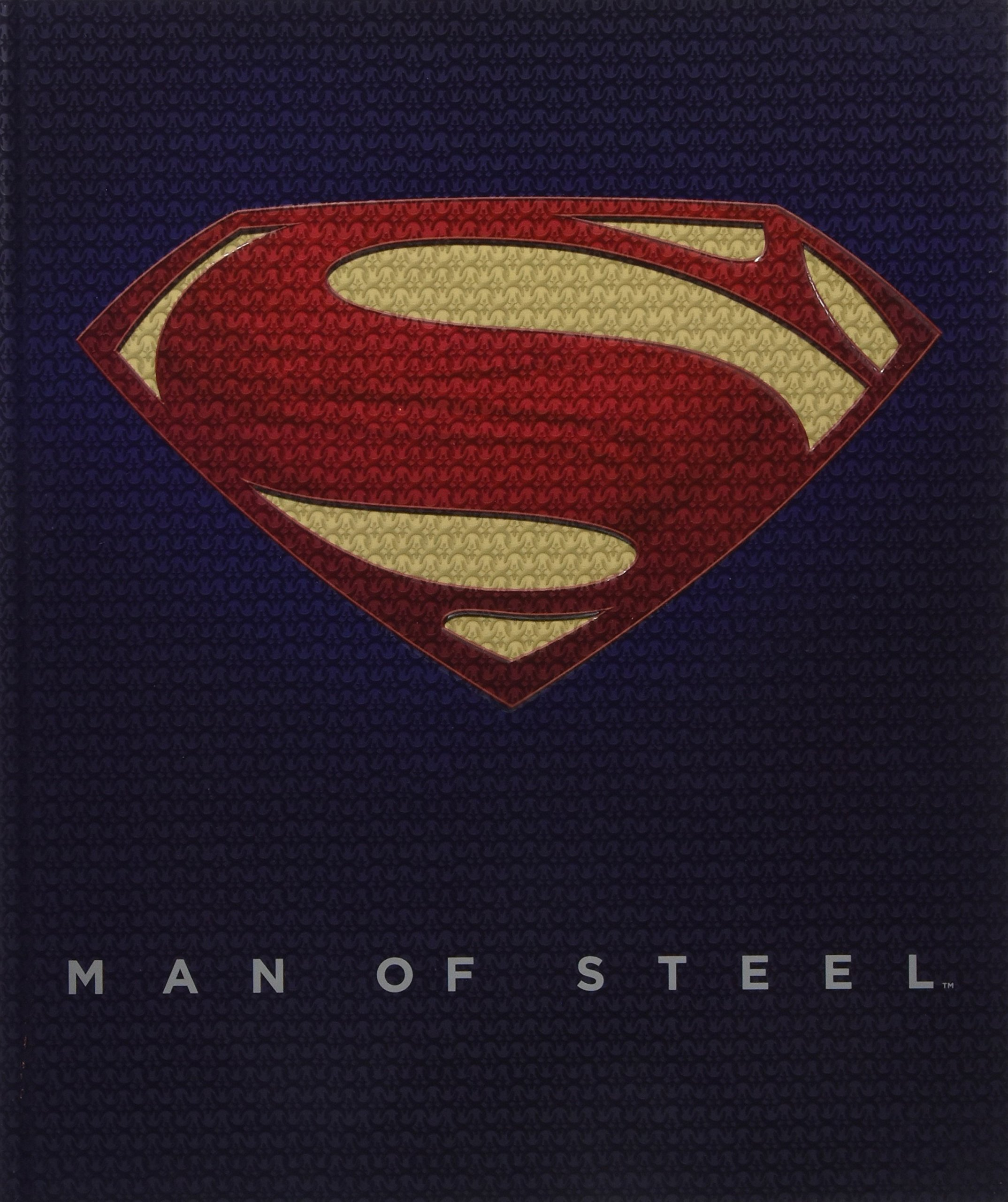 Inside the Legendary World of Superman Copertina rigida Man of Steel