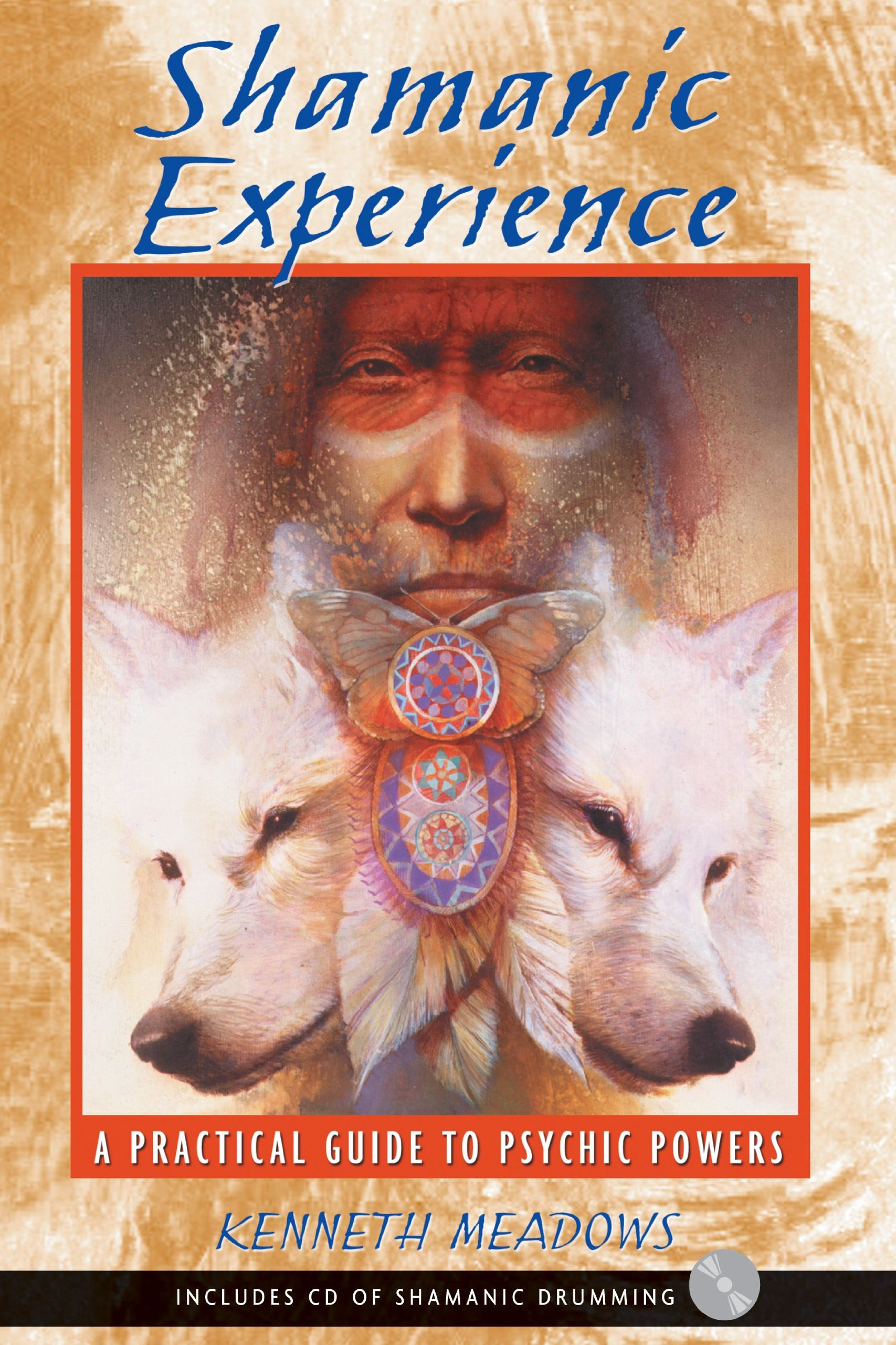 Shamanic Experience: A Practical Guide to Psychic Powers PDF ePub book