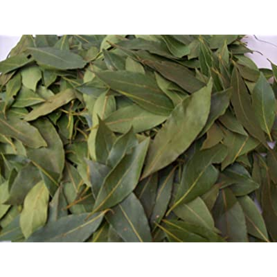Laurel Leaves from Italy-Whole Organic Pure Bay Laurel Leaf - Laurus Nobilis - 50 Leaves : Garden & Outdoor