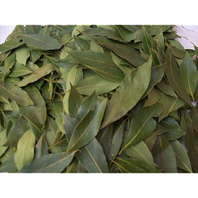 Laurel Leaves from Italy-Whole Organic Pure Bay Laurel Leaf - Laurus Nobilis - 50 Leaves : Garden & Outdoor [5Bkhe0800356]