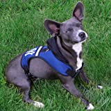 Pets First NFL Los Angeles Rams Harness, Small