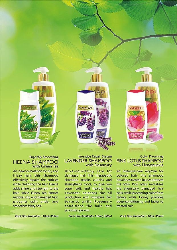 Champú Natural de Amla/Grosella Shikakai/Acacia concinna - Acondicionador de Cascada y Daños con Rosa de Maíz - Sin Parabeno - Sin Sulfato - Terapia de ...