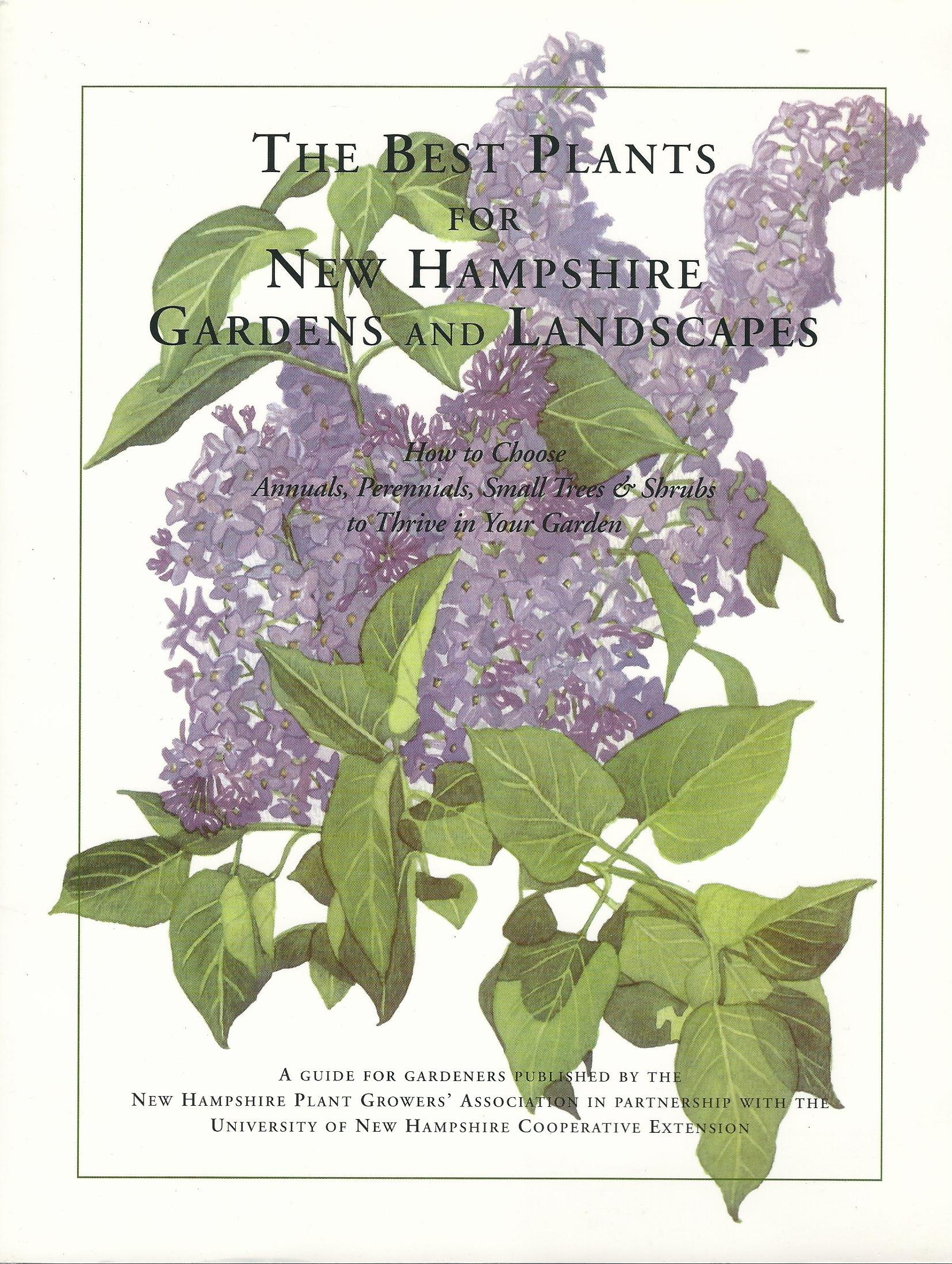 The Best Plants For New Hampshire Gardens And Landscapes How To