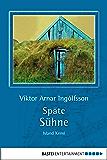Späte Sühne: Island-Krimi (Allgemeine Reihe. Bastei Lübbe Taschenbücher)