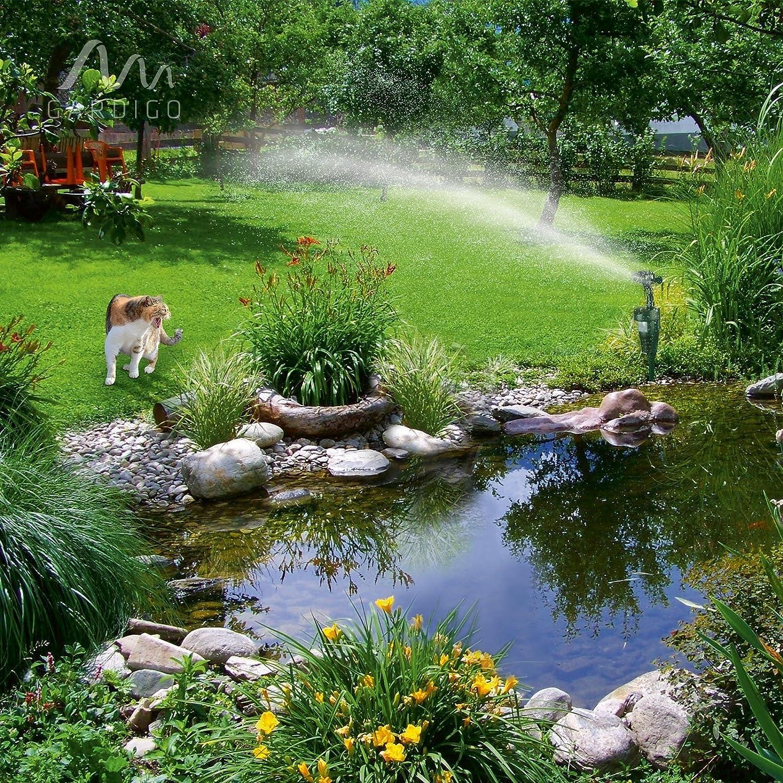 Gardigo Ahuyentador de Animales con Rociador; Anti-Gatos, Perros y Pájaros   Aspersor de Agua con Sensor Movimiento - 60 m²: Amazon.es: Hogar