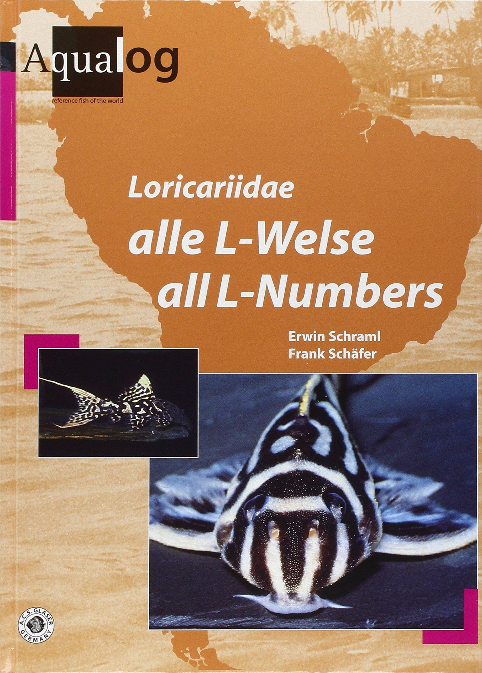 Loricariidae: Alle L-Welse. All L-Numbers: Amazon.es: Erwin Schraml, Frank Schäfer, Mary Bailey: Libros en idiomas extranjeros