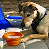 Kurgo Collapsible & Portable Travel Dog Bowl for